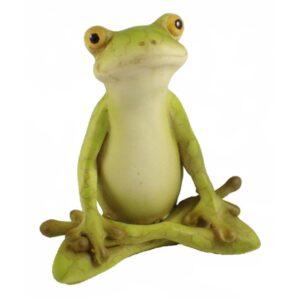 Garden Frog - Zen