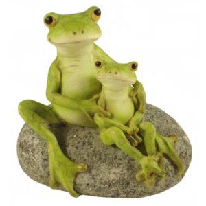 Garden Frog - Caring