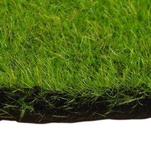 Fairy Garden Square - Sponge Grass (1 sqm)