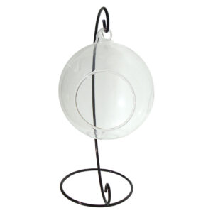 Hanging Glass Terrarium 12cm with Metal Stand